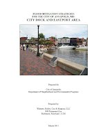 (March 2011). Flood Mitigation Strategies for the City of Annapolis, MD: City Dock and Eastport Area