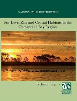 Glick, P., Clough, J., & Nunley, B. (2008). Sea-Level Rise and Coastal Habitats in the Chesapeake Bay Region: Technical Report. National Wildlife Foundation, Reston, VA.